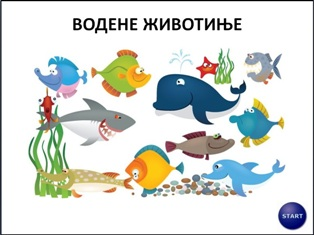 vodenezivotinje